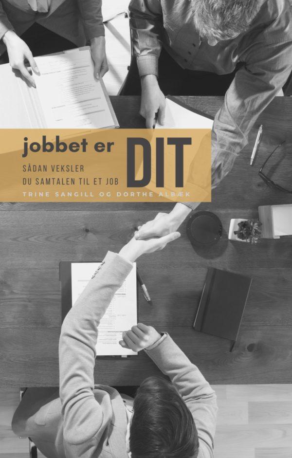 Ny bog om jobsamtalen - jobbet er DIT